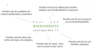 pour une biodiversite sauvegardee